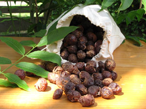 soapnuts_natural_detergent_environment_friendly_eco